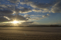 Porkala, Kyrksltt (Dencku) Tags: sky cloud sun sol field suomi finland landscape himmel maisema ker landskap moln aurinko pilvi porkala taivas kirkkonummi pelto porkkala kyrksltt junkars