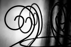 10/365 Curves - 365 Project 2 - 2016 (Helen) (dorsetpeach) Tags: flowers winter england macro spring dorset 365 nationaltrust wimborne kingstonlacy 2016 365project aphotoadayforayear second365project