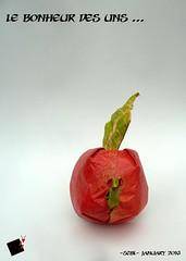 le bonheur des uns... (-sebl-) Tags: apple paper square origami expression sebl