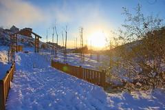 Çayırova'dan Kar Manzaraları 24