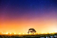 (joffre0714) Tags: light night star three pretty taiwan shooting