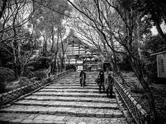 Shashin - DSCN2922 (Mathieu Perron) Tags: life city bridge people bw white black monochrome japan nikon kyoto noir perron daily nb journey  mp blanc japon personne ville gens vie mathieu   sjour    quotidienne  ryanji     p520  zheld