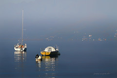 due barche (pamo67) Tags: 2 mist lake water fog lago blu calm nebbia acqua calma foschia twoboats pamo67 pasqualemozzillo