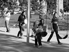 Grandchild! (Wildlife_Biologist) Tags: park people blackandwhite monochrome playground kids children outside kid child grandmother mother swing grandchild humanbeing grandparent homosapiens wldlifebiologist