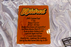 1949 Ford detail (bballchico) Tags: ford custom 1949 shoebox mildred kustom awardwinner grandnationalroadstershow bearmetalkustoms jasonpall radicalhardtop4954 gnrs2016