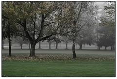 Herbst im Park - Bad Nauheim (HP-Fotografie) Tags: nikon hessen bad nauheim d7100