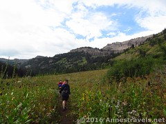 Hiking Teton Canyon to the Stairway to Heaven (Anne's Travels 4) Tags: canyon wyoming wilderness tetons stairwaytoheaven grandtetonnationalpark jedediahsmithwilderness