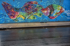 rainbow fish (Blinkofanaye) Tags: blue fish color rain brooklyn mural brazilian calangos edermuniz walltherapy