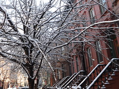 Wet Snow, Jersey City, New Jersey (lensepix) Tags: winter snow newjersey jerseycity wetsnow