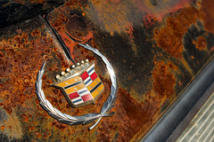Still Shining (ISP Bruno Laplante) Tags: old blue red arizona orange black yellow metal rust decay az 66 cadillac route ornament chrome hood shining decaying kingman