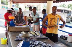 Fishmongers (DJ Greer) Tags: morning woman fish man male men female town village market sale martinique knife carribean fresh explore sharpen sell fishmonger anse chadiere