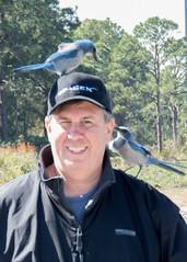 IMG_3464 (Bill Jelen) Tags: birding scrubjay rockledge