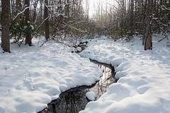 ontatru preserve (Homemade) Tags: winter snow ny newyork cold water stream westchestercounty southsalem lewisboro sonydscrx100 onatrupreserve