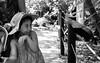 Shyness / Timidez (Adelobra01) Tags: smile cali kids zoo colombia niños sonrisa felicidad infancia shyness