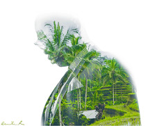 Double Ex 7/52 (Richy F/ Paris) Tags: bali tree green doubleexposure suit palmtree suittie