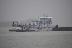 MV Jinx P. Smith_9096 (Porch Dog) Tags: rain kentucky ohioriver barges towboats 2016 paducahkentucky garywhittington footofbroadway nikon18300mm nikond7000