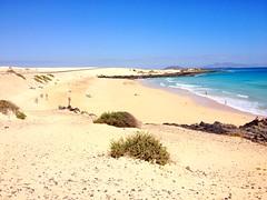 Dnen von Corralejo (billyklein55) Tags: beach strand fuerteventura dnen corralejo