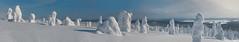 Snowy winter landscape - Riisitunturi (talaakso) Tags: winter panorama lake snow sunshine suomi finland finnland lapland mountainview lumi talvi spruce snö fell lappi snowcoveredtrees winterlandscape landskap järvi gren spruceforest fjäll tunturi panoraama piceaabies posio kuusi tykkylumi kuusikko auringonpaiste riisitunturi talvimaisema ylikitka felltop snowload terolaakso riisitunturinationalpark upplega crownsnowload tunturimaisema riisitunturinkansallispuisto talaakso snowywinterlandscape
