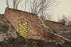 240216_267   am ehem. Frachten-Bhf. Praterstern (the_apex_archive) Tags: vienna wien streetart abandoned stairs graffiti austria bricks treppe brickwall apex badlands verlassen wasteland leopoldstadt brachland ziegel stadtansicht bricked aufgegeben 240216 stadtentwicklungsgebiet ehemaligerfrachtenbahnhofpraterstern ehemaligernordbahnhof g´stettn 2422016 geziegelt