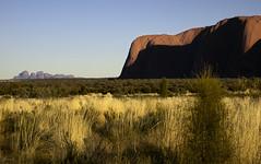DSC07006 (slackest2) Tags: grass rock sunrise australia uluru kata tjuta northern ayres scrub olgas territory