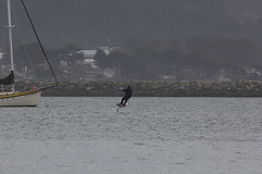 IMG_2505 (armadil) Tags: beach beaches mavericks kitesurfers windsurfers californiabeaches