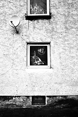 Kalkofen Kaiserslautern (formwandlah) Tags: poverty street door city urban bw white black reflection strange contrast germany dark photography graffiti blackwhite high noir pentax outdoor candid fenster streetphotography struktur structure mysterious architektur gr sureal ghetto spiegelung ricoh gebude tr rambo kaiserslautern fassade abstrakt thorsten prinz melancholic handschrift armut bizarr textur skurril sozialer einfarbig brennpunkt mysteris melancholisch kalkofen formwandler asternweg schlichtwohnungen