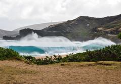 Sandy Beach Bombing 03/08/16 (Run amuck) Tags: surf waves oahu sandybeach surfphotography fishscalephoto