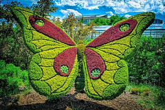 Giant Sculptures Made of Plants and Flowers 6
