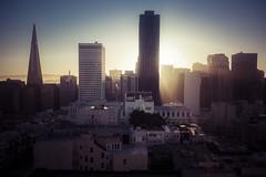 sun up in san francisco (Robin Jaffray) Tags: sanfrancisco california city light shadow urban usa building skyline architecture skyscraper sunrise gold dawn glow cityscape sony rx100 sonydscrx100