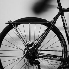 bicycle rack for Alx (Till Billy) Tags: bicycle diy tracks front rack fahrrad stainless racks solder löten brazing edelstahl braze gepäckträger
