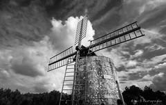 Le moulin de Daudet (Rmi Avignon) Tags: france fr fontvieille provencealpesctedazur