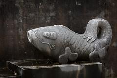 Stone Carp (Travis Mahan) Tags: park county fish statue stone illinois allerton carb piatt