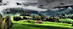 Blick Richtung Eichli & Zwiselen, Switzerland!   E-M5 MII  Panorama (Swiss.piton (B H & S C)) Tags: panorama schweiz switzerland ostschweiz myswitzerland shotforfun justmeandmycamera ibringmycameraeverywhere swissamateurphotographers schweizerphotographen toggenburgostschweiz panorama2x1 olympusem5miizuikom75mmf18