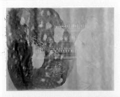 Beer Goggles (thereisnocat) Tags: beer polaroid newjersey nj brewery carton monmouthcounty atlantichighlands 250 fp3000b cartonbrewing roidweek2016