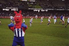 Roos Mascot (stopsign38) Tags: football mascot kangaroo afl northmelbourne etihadstadium