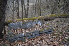 Curb Couch (sjweikart) Tags: blue ohio tree green abandoned forest lost moss woods alone hiking decay empty north ne east couch sofa forgotten pollution decrepit exploration northeast discovered withering uncovered
