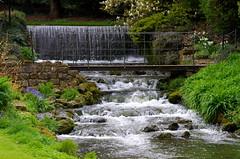 The waterfall. (pstone646) Tags: bridge flowers plants nature water river waterfall kent rocks