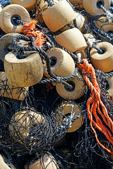 NS-00565 - Buoys and Net (archer10 (Dennis) (72M Views)) Tags: canada net novascotia sony free lobster dennis jarvis peggyscove buoys traps iamcanadian mirrorless freepicture dennisjarvis archer10 dennisgjarvis alpha7ii 24240mm