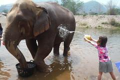 Bathing time (kcosgrove) Tags: mai chiang