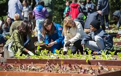 White House Kitchen Garden Planting (NHQ201604050016) (NASA HQ PHOTO) Tags: students whitehouse astronaut nasa firstlady cadycoleman michelleobama davanewman whitehousekitchengarden nasadeputyadministrator aubreygemignani