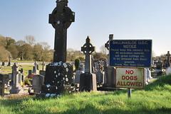 ballinasloe_163 (HomicidalSociopath) Tags: ireland cemetery architecture spring nikon crosses april ballinasloe d60