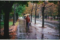 Under rain (Alimkin) Tags: город дождь жанр краматорск донецкаяобласть украинаukraine краматорскkramatorsk донецкаяобластьdonetskregion катеринича