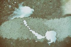 Dripdrop (shortscale) Tags: milch pftze