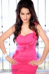 Bollywood Actress Meghna Patel Photos Set-1 (27)