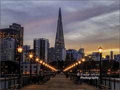 Pier 7 (bretton98) Tags: sanfrancisco sky buildings outdoors lights twilight cityscape structure pier7 transatlanticpyramid davidwhitephotographybretton98californiacanon7dmkii