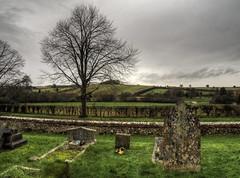 The Graveyard at Old Alresford, Hampshire (neilalderney123) Tags: tree graveyard landscape olympus hampshire winchester alresford 2016neilhoward