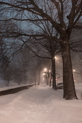 Central Park West (Strykapose) Tags: newyorkcity snow storm night perspective windy sidewalk jonas blizzard desolate snowdrifts centralparkwest fredericklawolmsted travelban canon5d3 strykapose 1232016 winterstormjonas