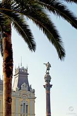 Columbus Statue Barcelona (J.Bleeker) Tags: barcelona city columbus port photo harbour palmtree lasramblas