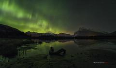 Green Pillars (SkSherwin) Tags: alberta banff auroraborealis canadianrockies vermilionlakes travelalberta filipinolandscapephotographer banfflandscapephotographer