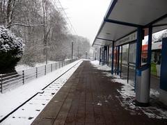 Stieghorst zentrum tram lines Bielefeld Germany 26th January 2014 snow  26-01-2014 14-25-19 (dennoir) Tags: snow lines germany january tram zentrum bielefeld 26th 2014 stieghorst 142525 26012014